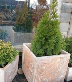 Горшок для растений 'Marble'. Куб