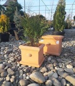 Горшок для растений 'Terracota'. Квадратный. Объём 16