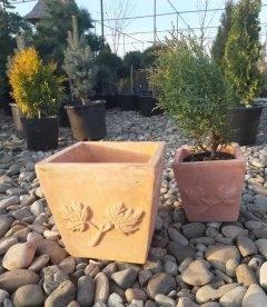 Горщик для рослин 'Terracota'. Ужгород