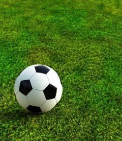 Трава газонна Игра та Спорт (НАСІННЯ)