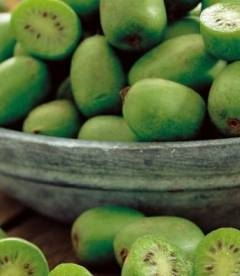Actinidia deliciosa Киви