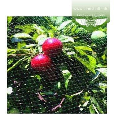 Сетка для защиты от птиц ORTOFLEX (250 x 4)