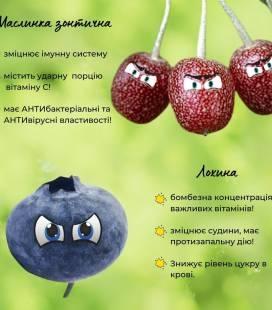 """Набор растений """"Полезный"""""""