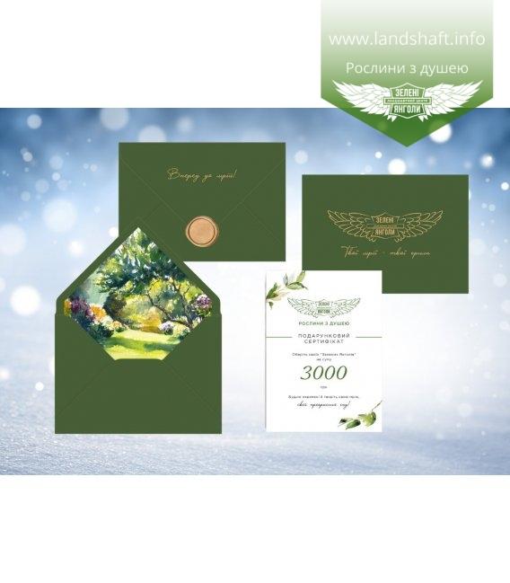 Подарунковий сертифікат на 3000 грн