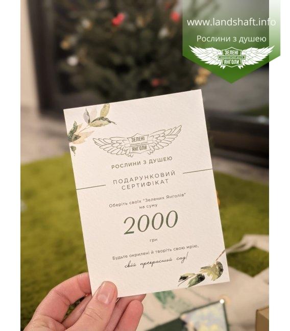 Подарунковий сертифікат на 500 грн