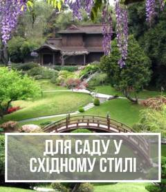 Рослини для садів у східному стилі