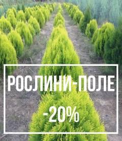 Рослини з поля до -20%