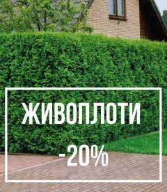 Живоплоти -20%