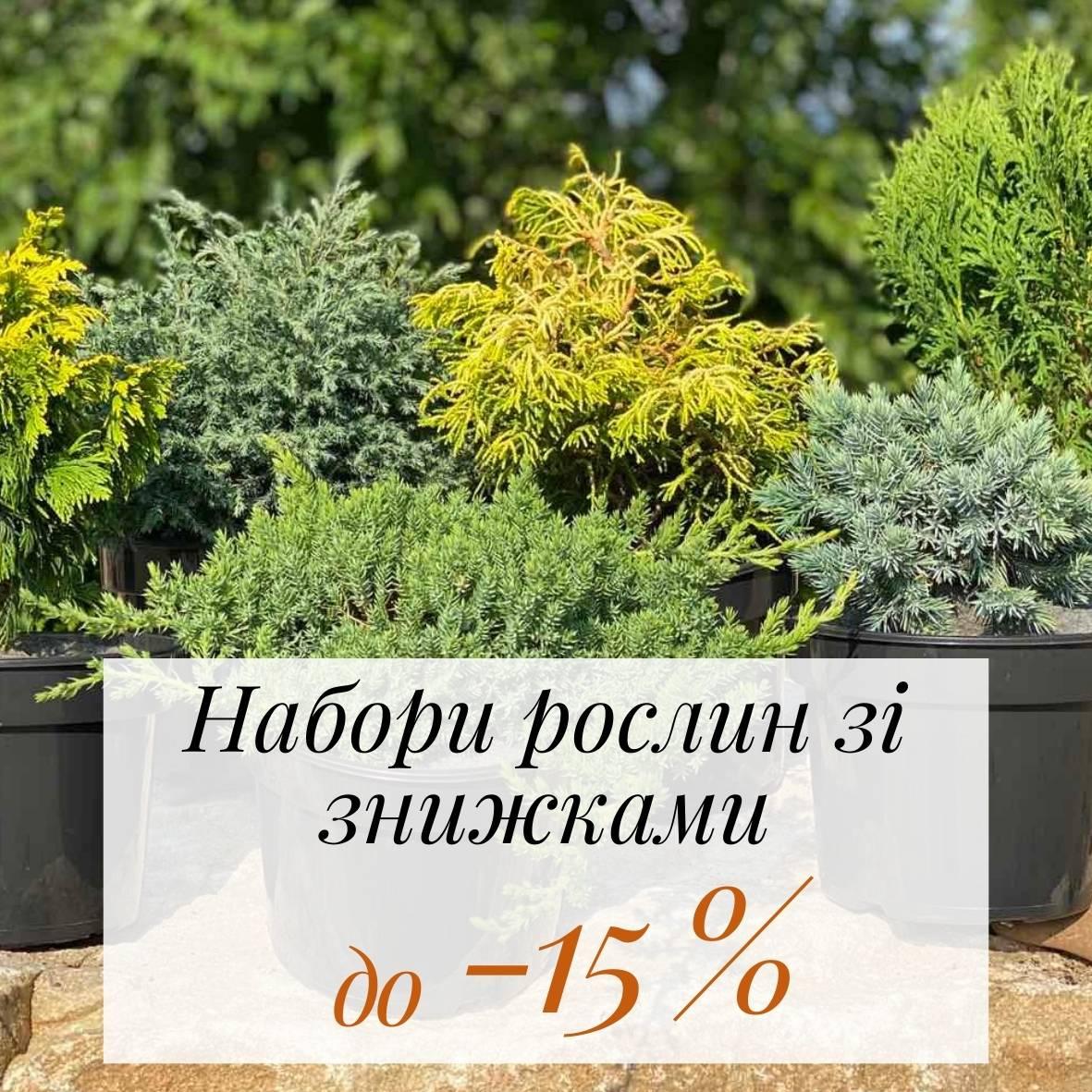Набори рослин зі знижками до -15%